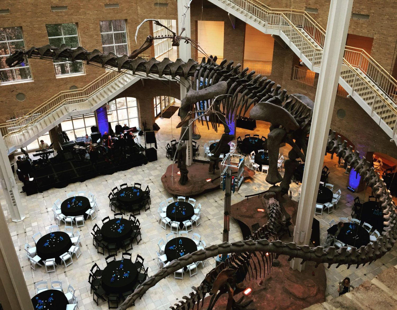 Atlanta-Dinosaur-Museum-e1489612553104.jpg