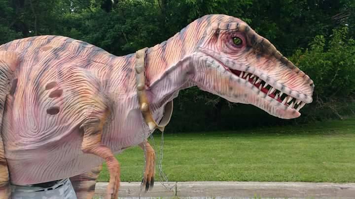 Rocky Raptor 2.jpg