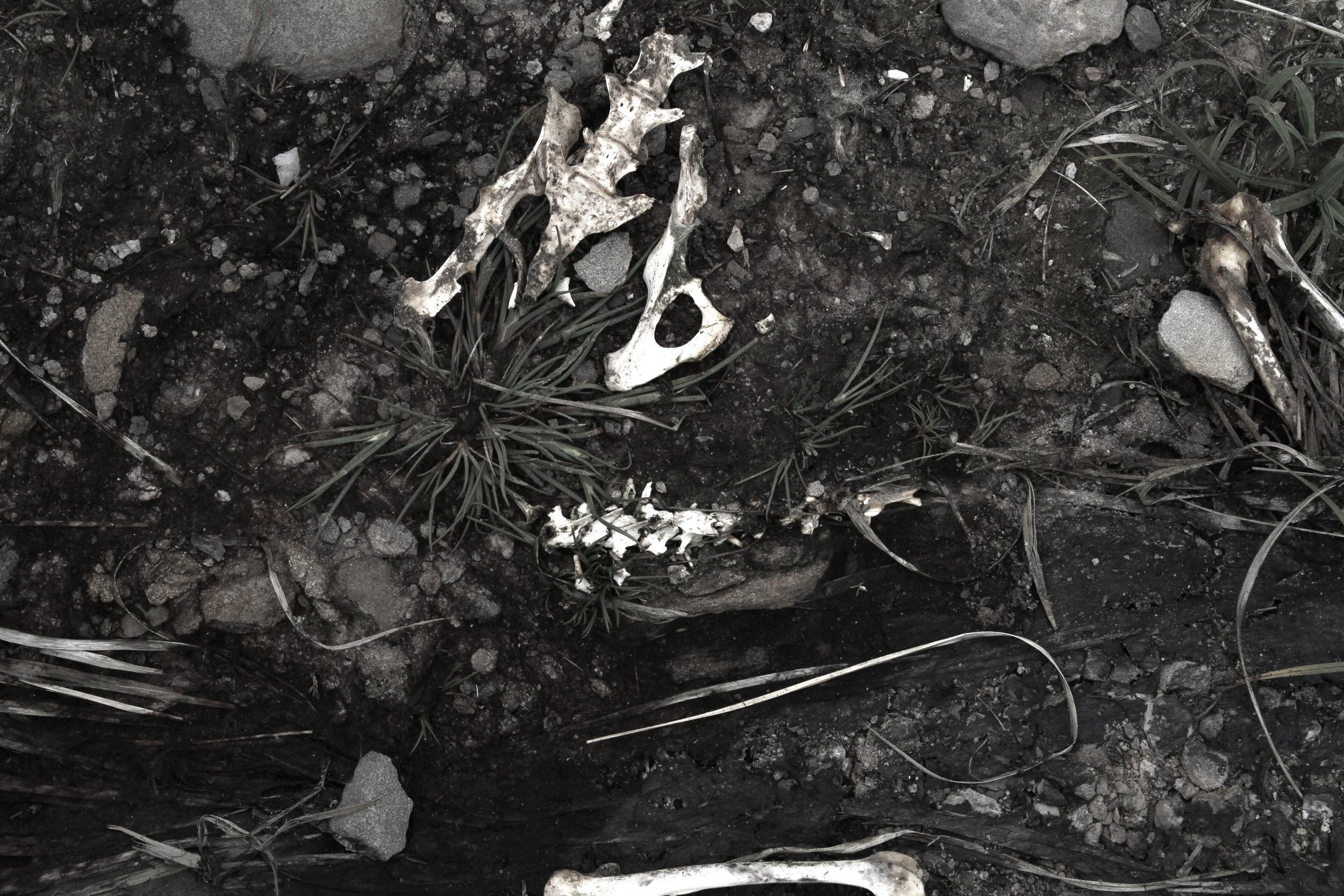 remains 5