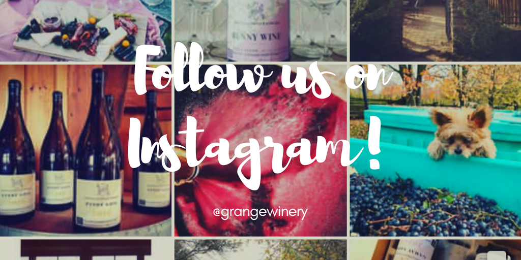 Follow us on Instagram!.png