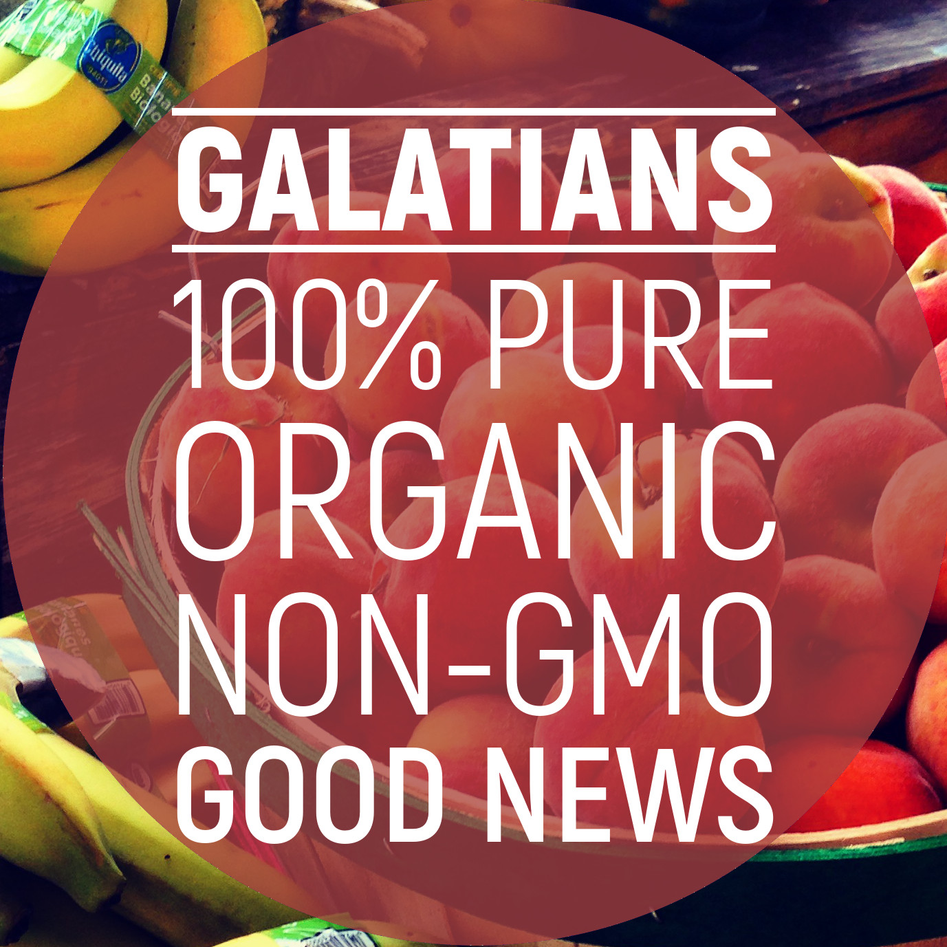 Galatians: 100% Pure, Organic, Non-GMO Good News