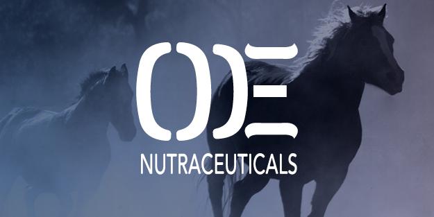outlaw_equine_tile3.jpg