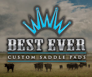 Blue Best-Ever-Pads_MediumSquare-Banner_300x250.jpg