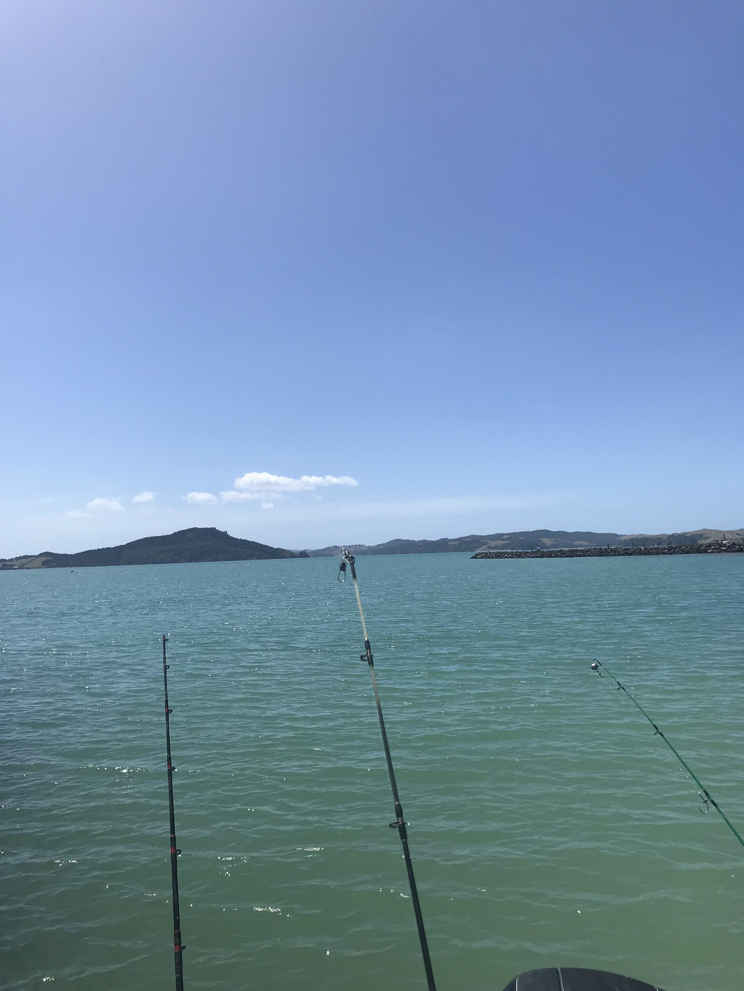 """My break was restful, enjoying time with family, our animals and in the garden, did manage a lovely day on the Hauraki for a fish which was a success. Great Kiwi Summer was enjoyed""  - Lara"