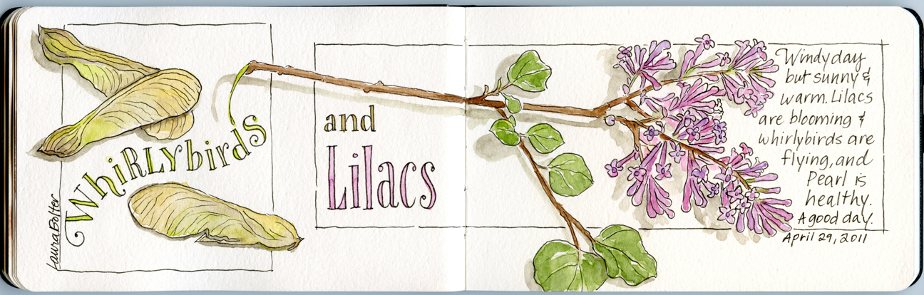 Whirlybirds and Lilacs