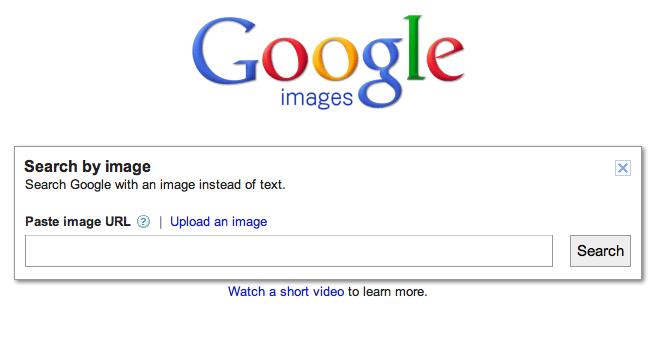 Google Image Search 2