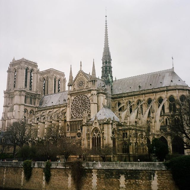 What a sad day. I shot a single frame of #NotreDame with my Rollei while traveling in Paris with my mother 2 years ago. Sending my love to a beautiful & resilient city.