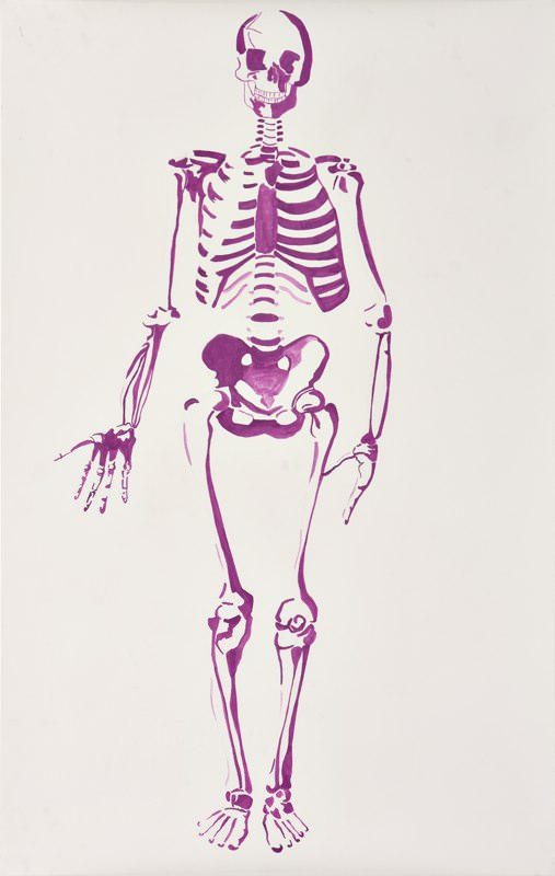 Mr. Bill Bones