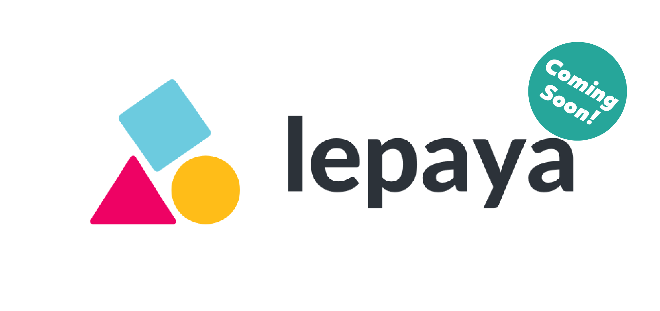Lepaya provides professional training and coaching that stretches beyond classroom experience and into effective practical application