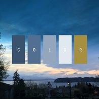 Albie Knows Color Palette Inspiration