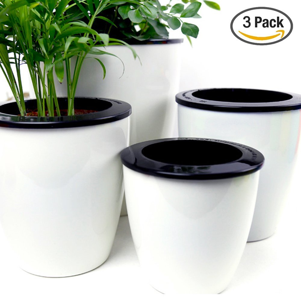 Albie Knows ORC -- Self Watering Pots (Amazon)