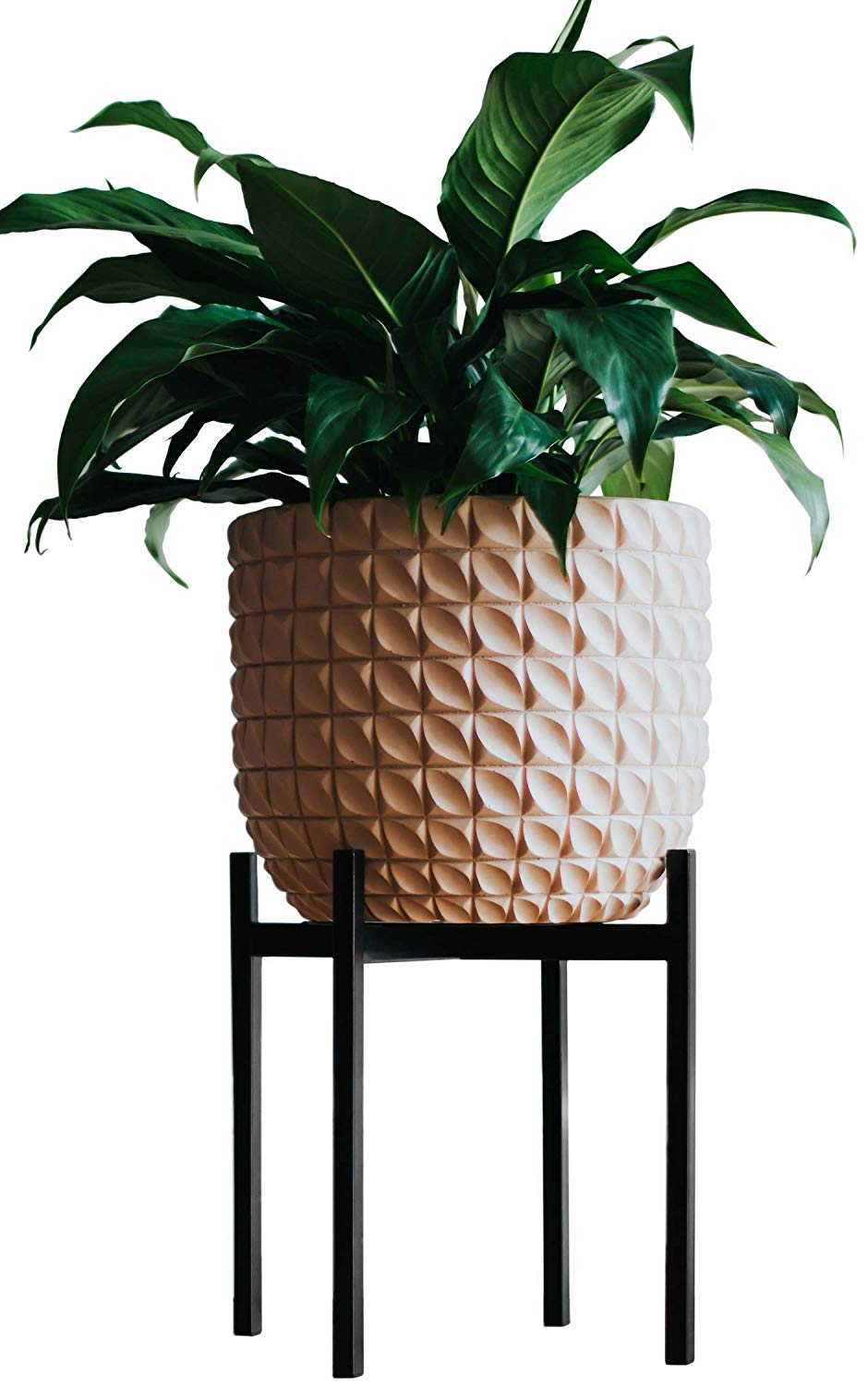 Black Metal Plant Stand | Amazon