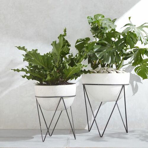 Iris Planter + Chevron Stand