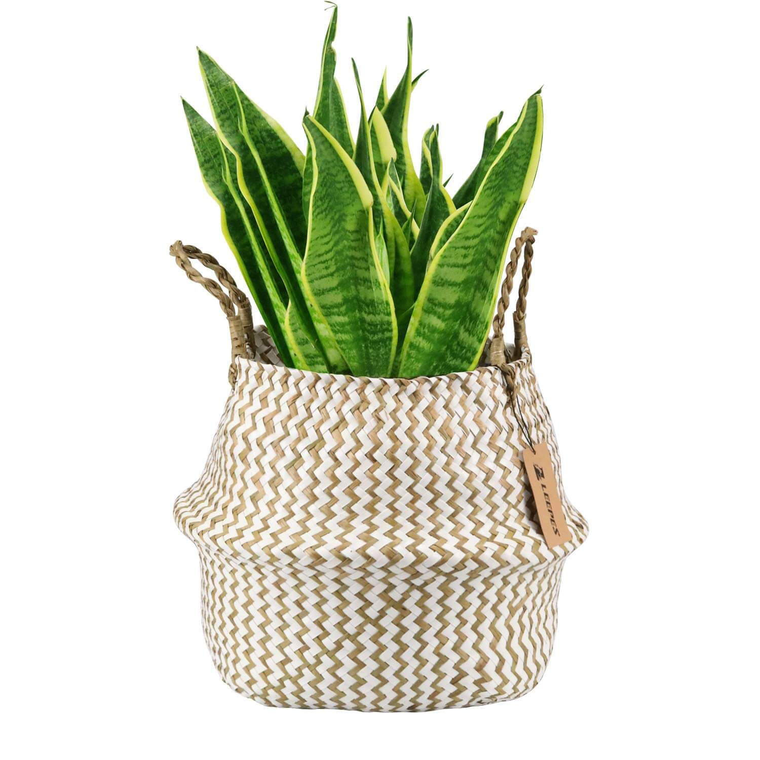Natural Craft Seagrass Belly Basket