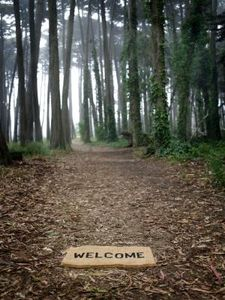 article-new_ehow_images_a07_od_rc_crafts-welcome-signs-800x800.jpeg