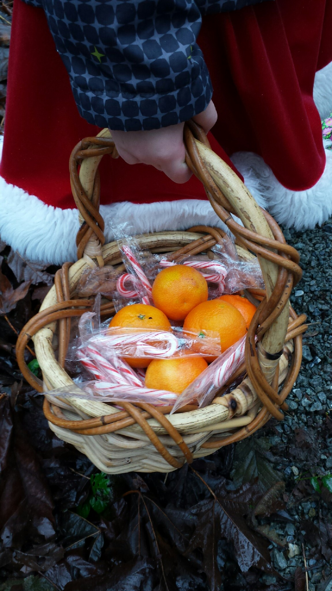 Candy Canes & clementines are treasures found within CHESTY Greenspace in December.