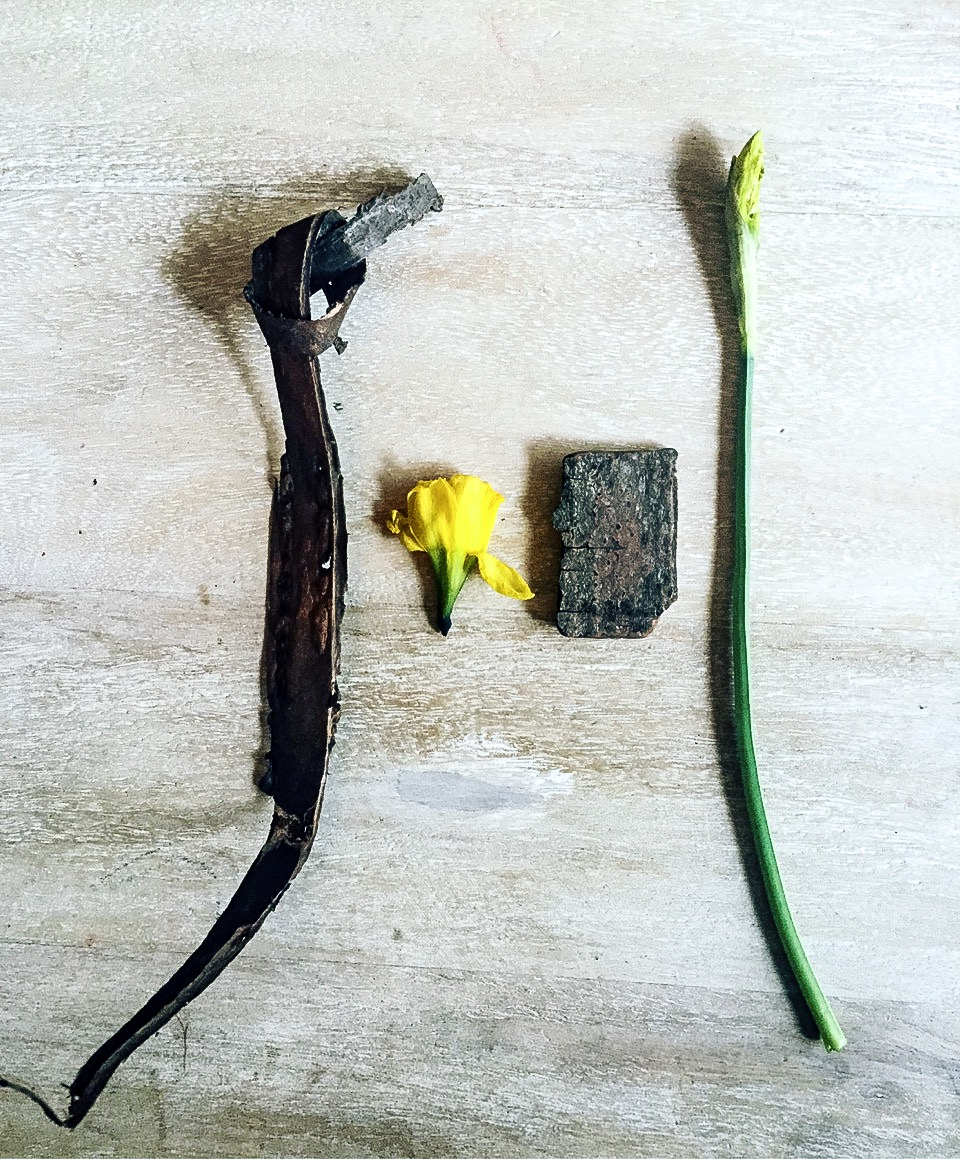 Anna's coat pocket treasures from March 2017