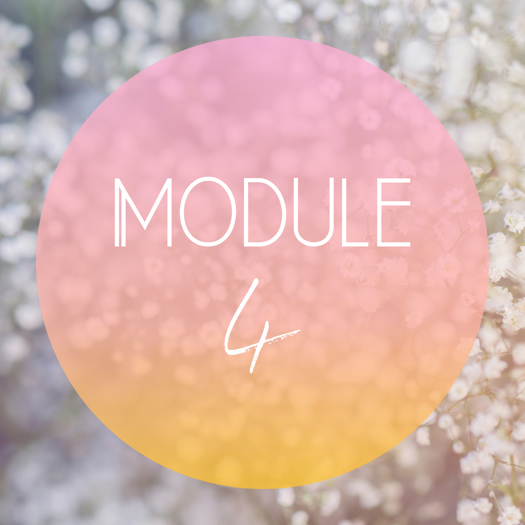 Module Four: Reinvigorate - Discover powerful and easy to implement practices that help you increase your energy on a daily basisFind out what your 'go to' recharging & selfcare practices are so you can strengthen and expand your repertoire