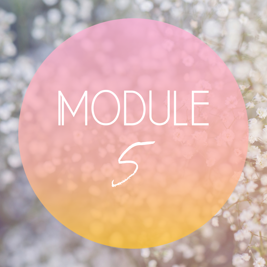 Module Five: The Lunar Cycle - Learn how to plan and work with the Moon Cycle, how to track the Moon and use the lunar energies to work and plan effectively in your work, life, and businessReceive guidance on Moon rituals and the importance intention setting