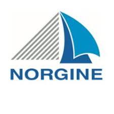 Norgine-logo.jpg