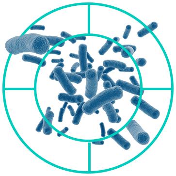 Bacteria+Target.jpg