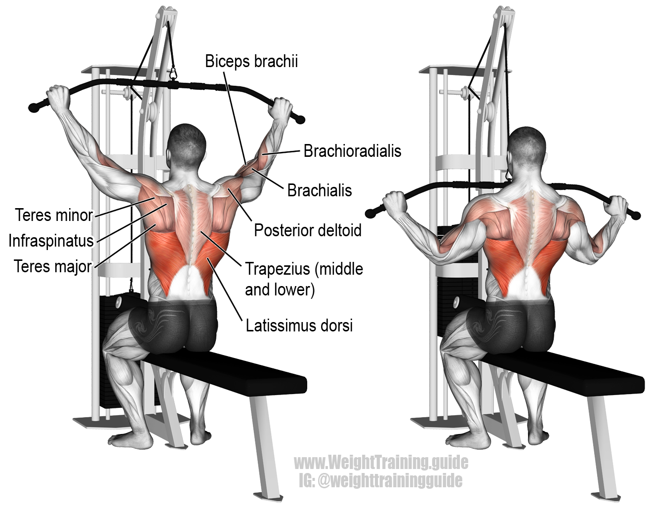 wide-grip-lat-pulldown.png