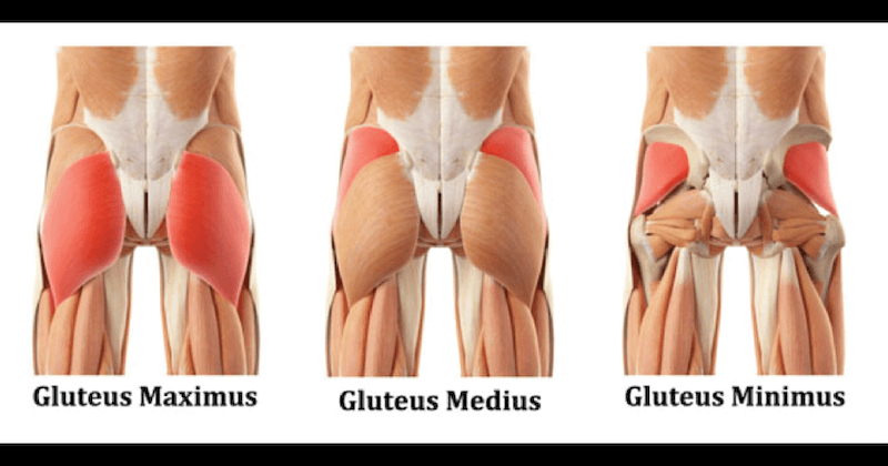glute-muscle-stretches.png