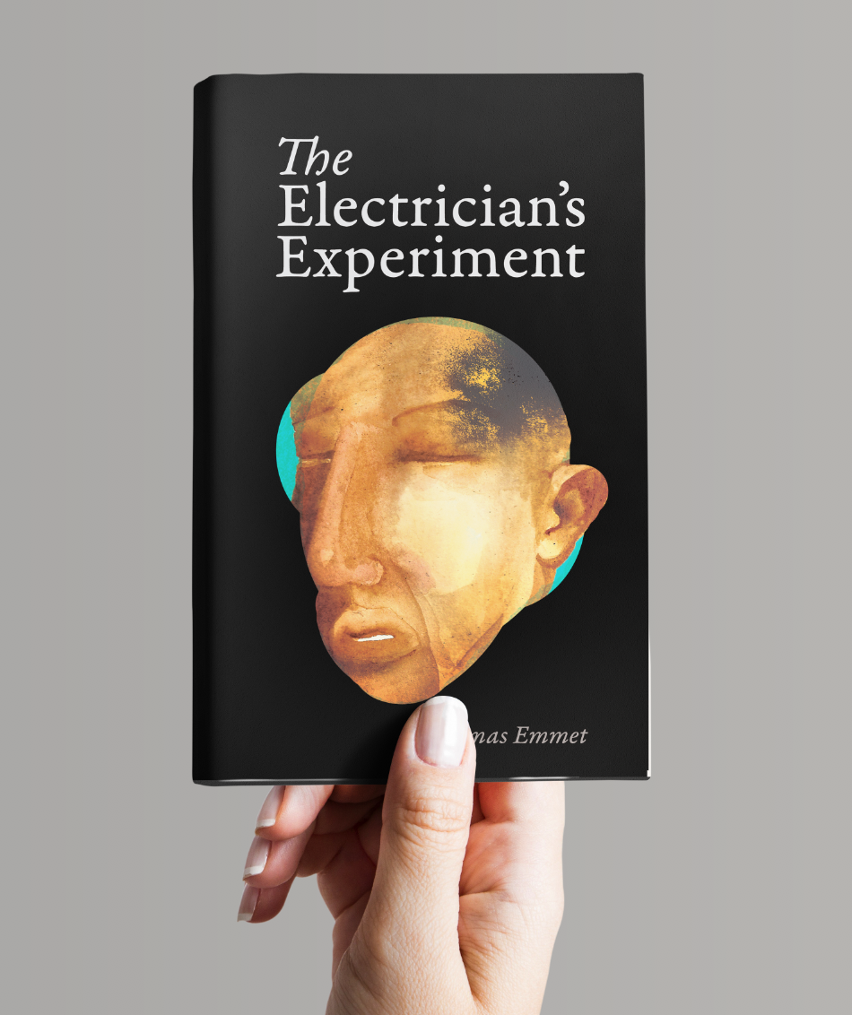 THE ELECTRICIAN'S EXPERIMENT  VIEW DETAILS >>