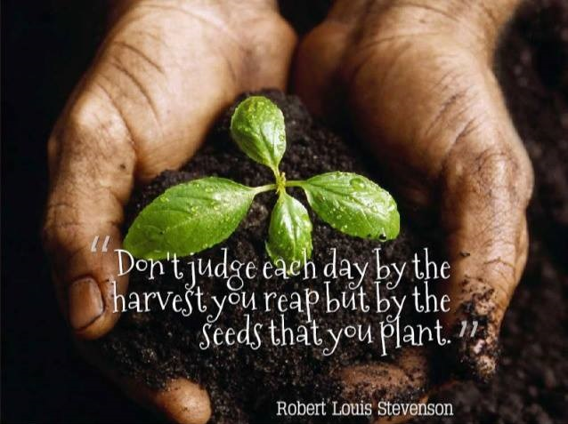 """Theme of the Week - Harvest 