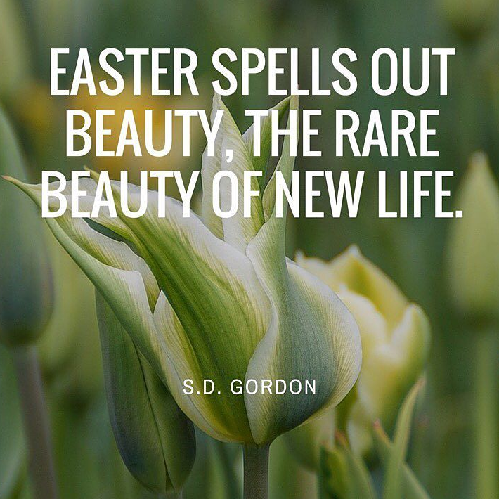 Theme of the Week - Easter | Y Pasg  'Easter spells out beauty, the rare beauty of new life.' - S.D. Gordon