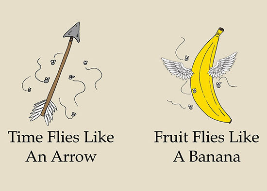 Theme of the Week - Time | Amser  'Time flies like an arrow; fruit flies like a banana' - Groucho Marx