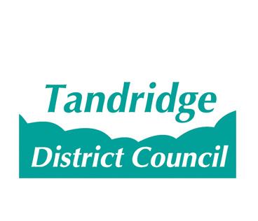 Colour TDC Logo copy.jpg
