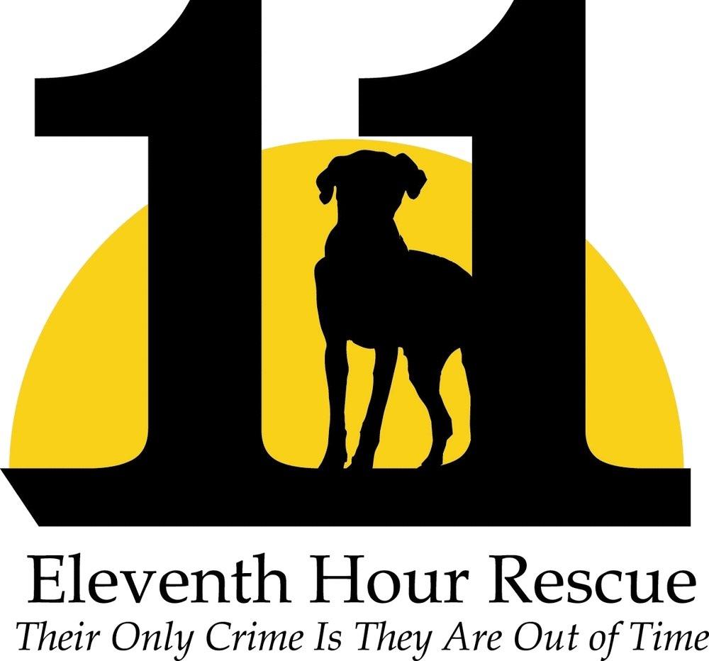eleventh-hour-rescue.jpg