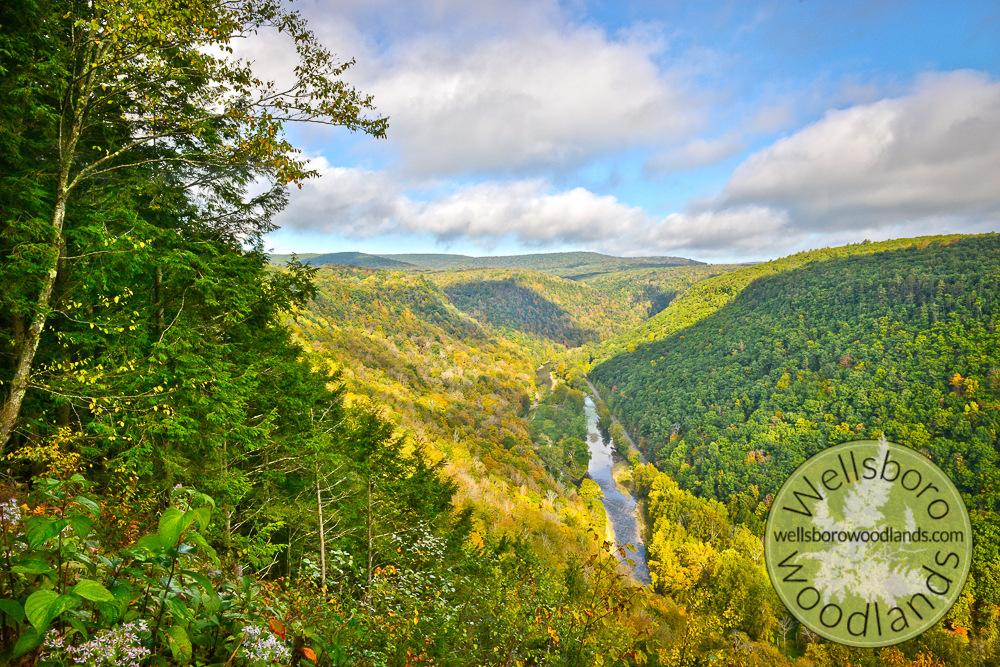 Autumn in the PA Grand Canyon, Bradley Wales Vista