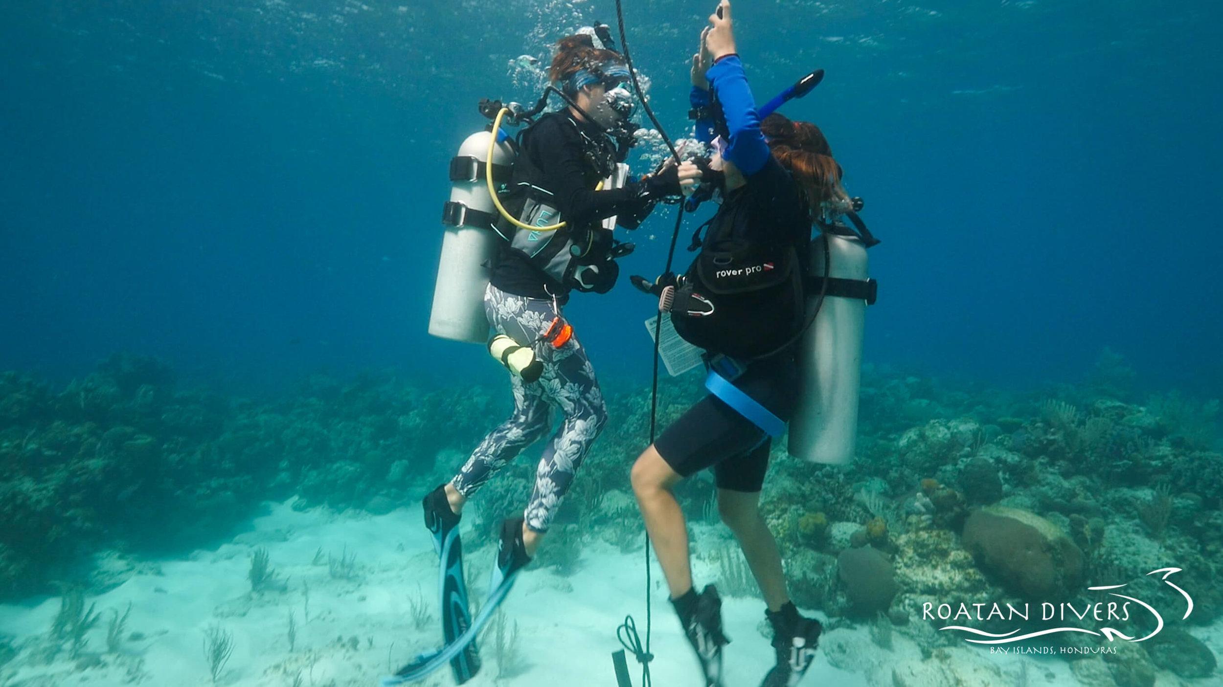 PADI Instructor Course Roatan Divers