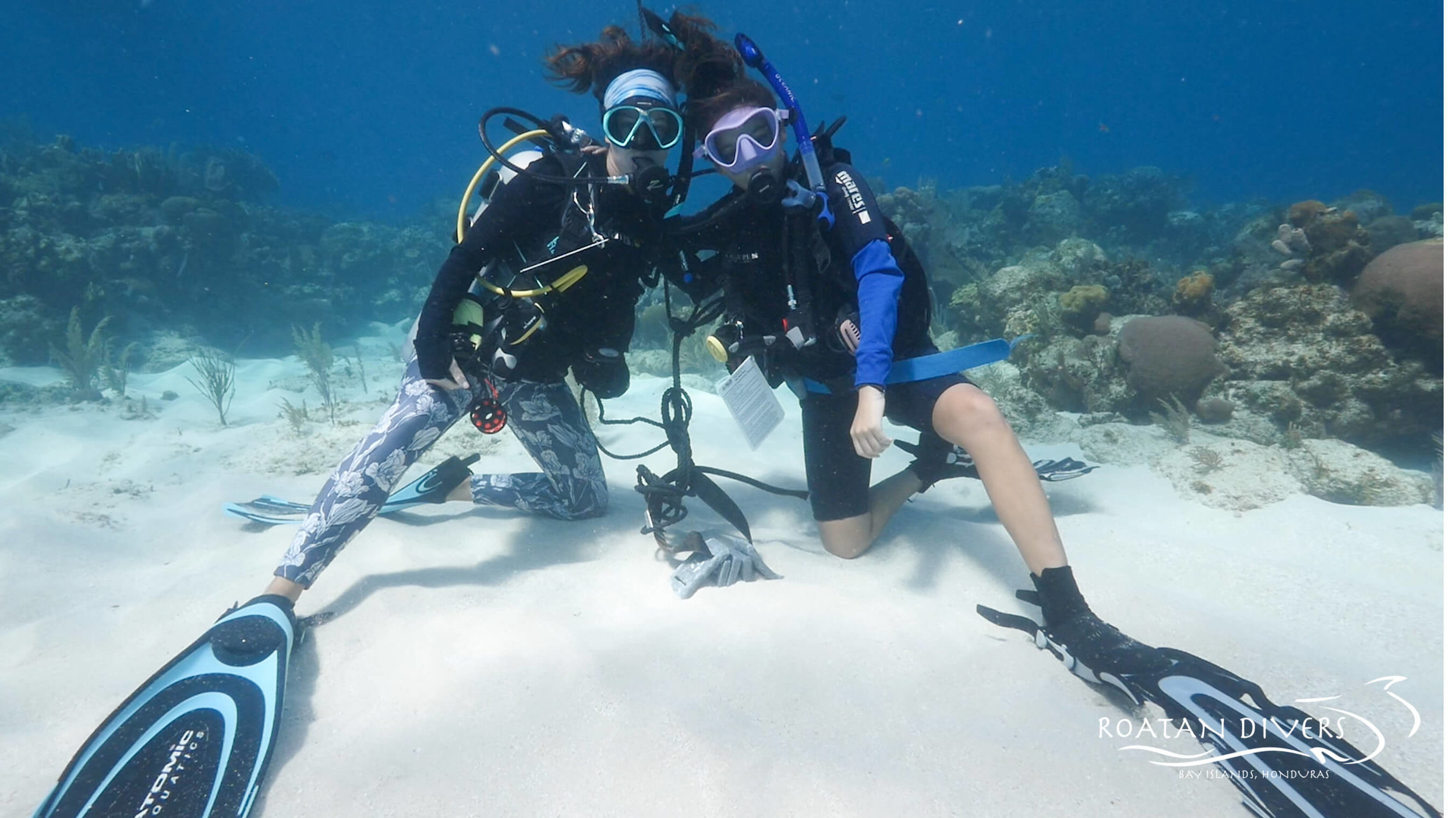 Teach What You Love Roatan Divers