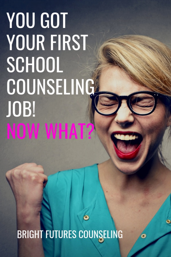 How to plan elementary school counseling small groups, character education guidance lessons, and individual sessions. A guide for first year elementary school counselors. #brightfuturescounseling #elementaryschoolcounseling #elementaryschoolcounselor #schoolcounseling #schoolcounselor #firstyearcounselor #guidancelessons #charactereducation #secondstep #smallgroups #individualsessions #counselinggroups #counselingsessions