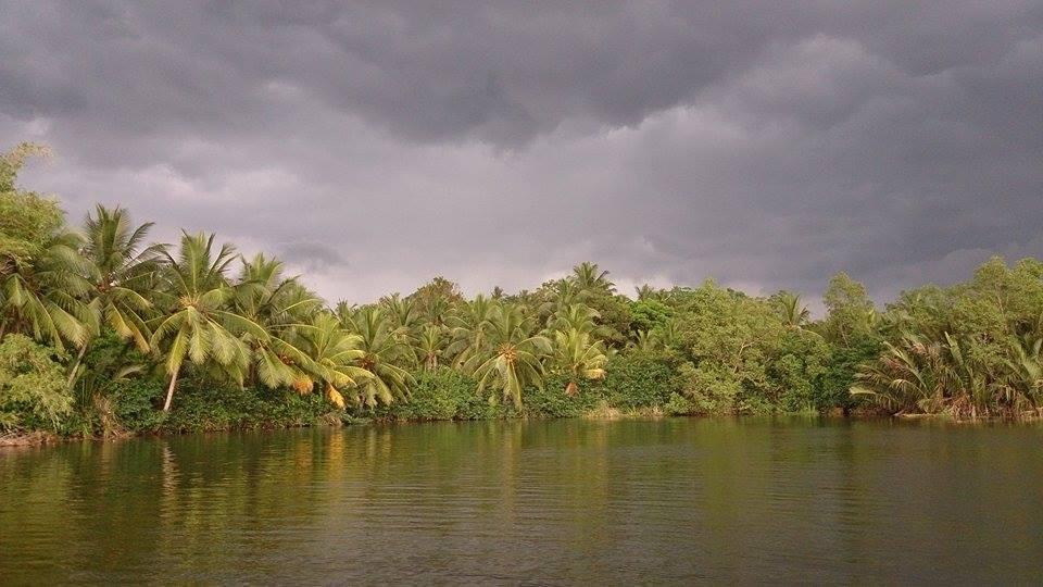 Scenery Bolgoda Lake Sportfishing Lanka
