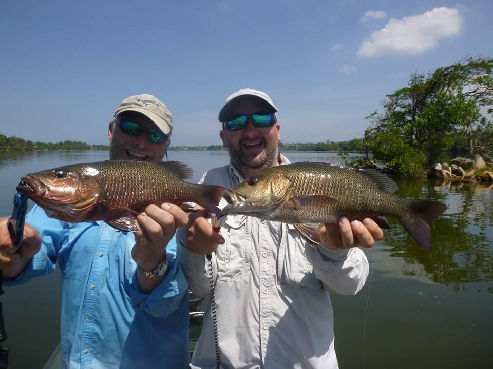 Mangrove Jack double hook up fishing Bolgoda Lake Sportfishing Lanka