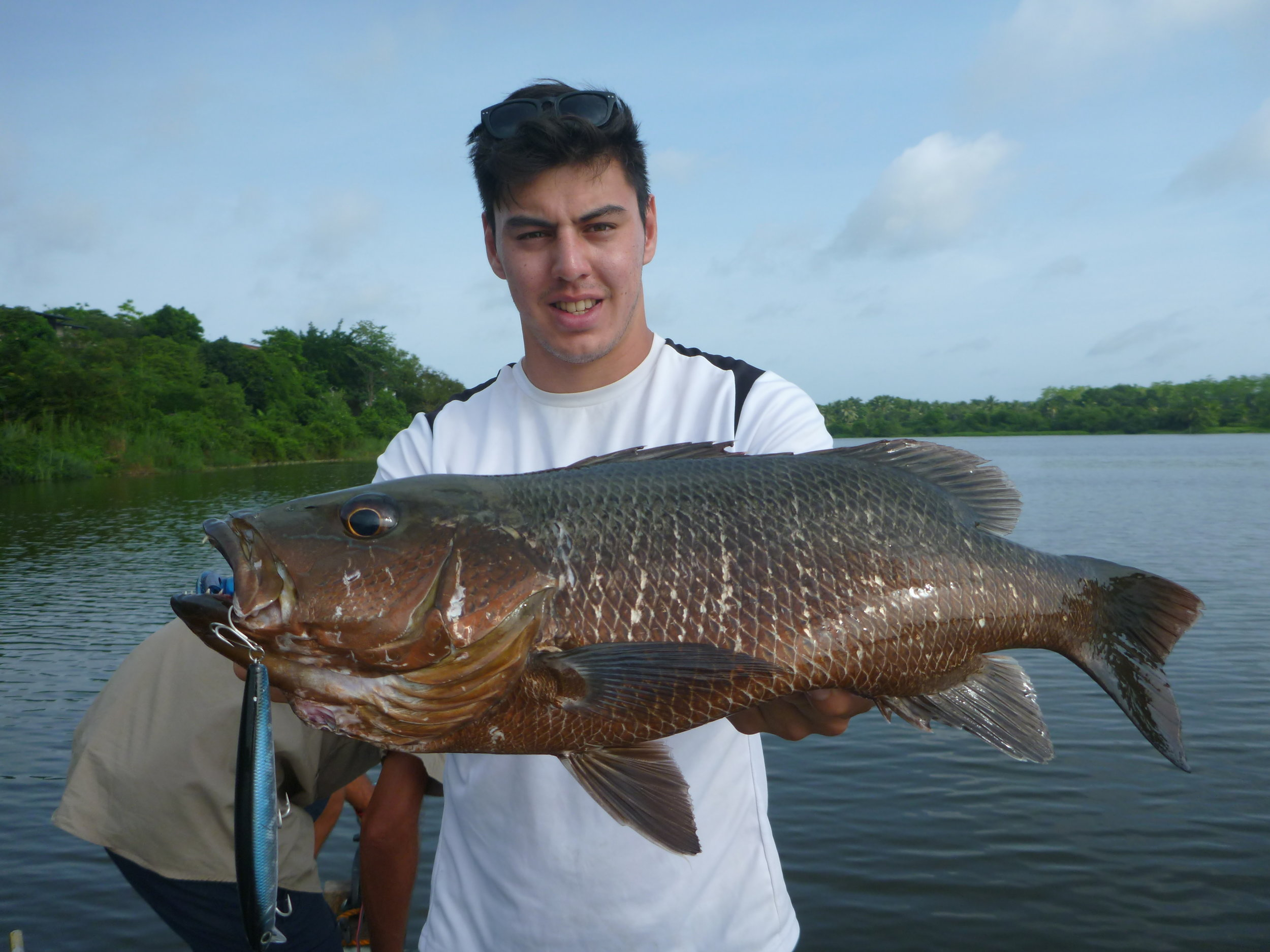 Big Mangrove Jack caught on Lucky Craft Flashminnow 110SP by Andrew.JPG
