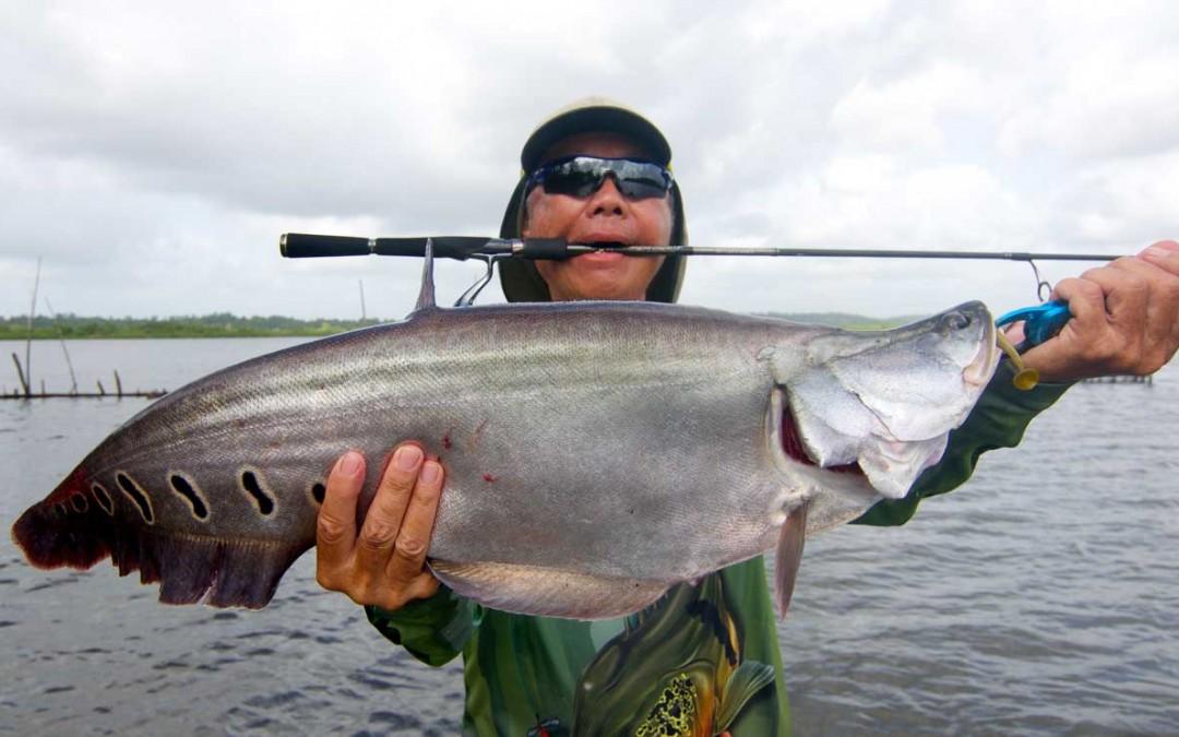 Sport Fishing Sri Lanka Bolgoda Lake Featherback Soft Plastic Bait