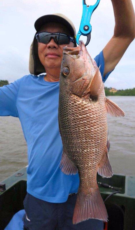 Sportfishing Sri Lanka Bolgoda Lake Mangrove Jack