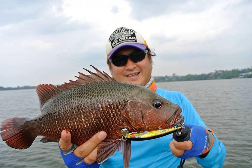 Fishing Bolgoda Lake Sri Lanka Sportfishing Lanka Mangrove Jack