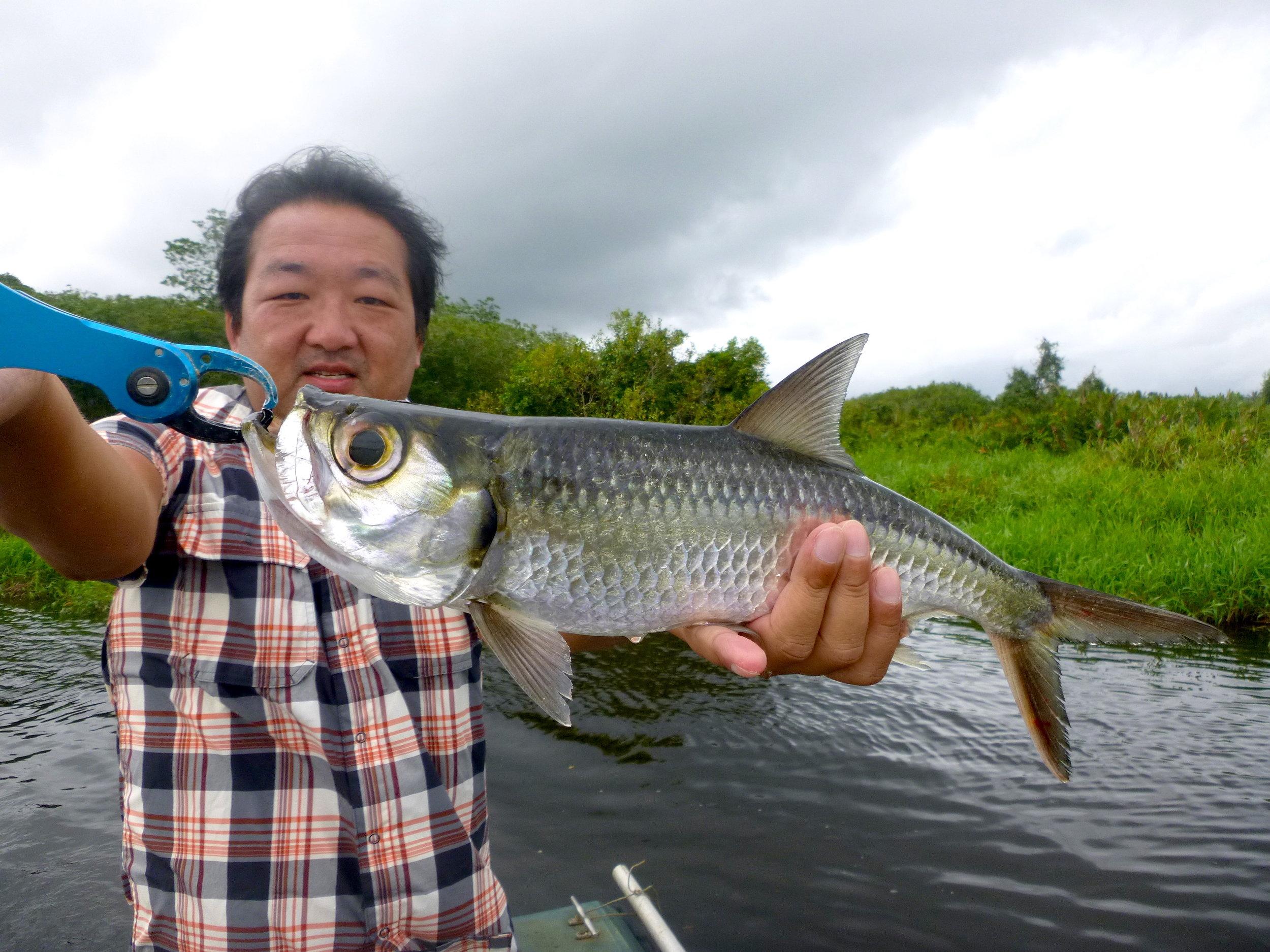 Sportfishing Lanka Oxeye Tarpon fishing at Bolgoda Lake.JPG