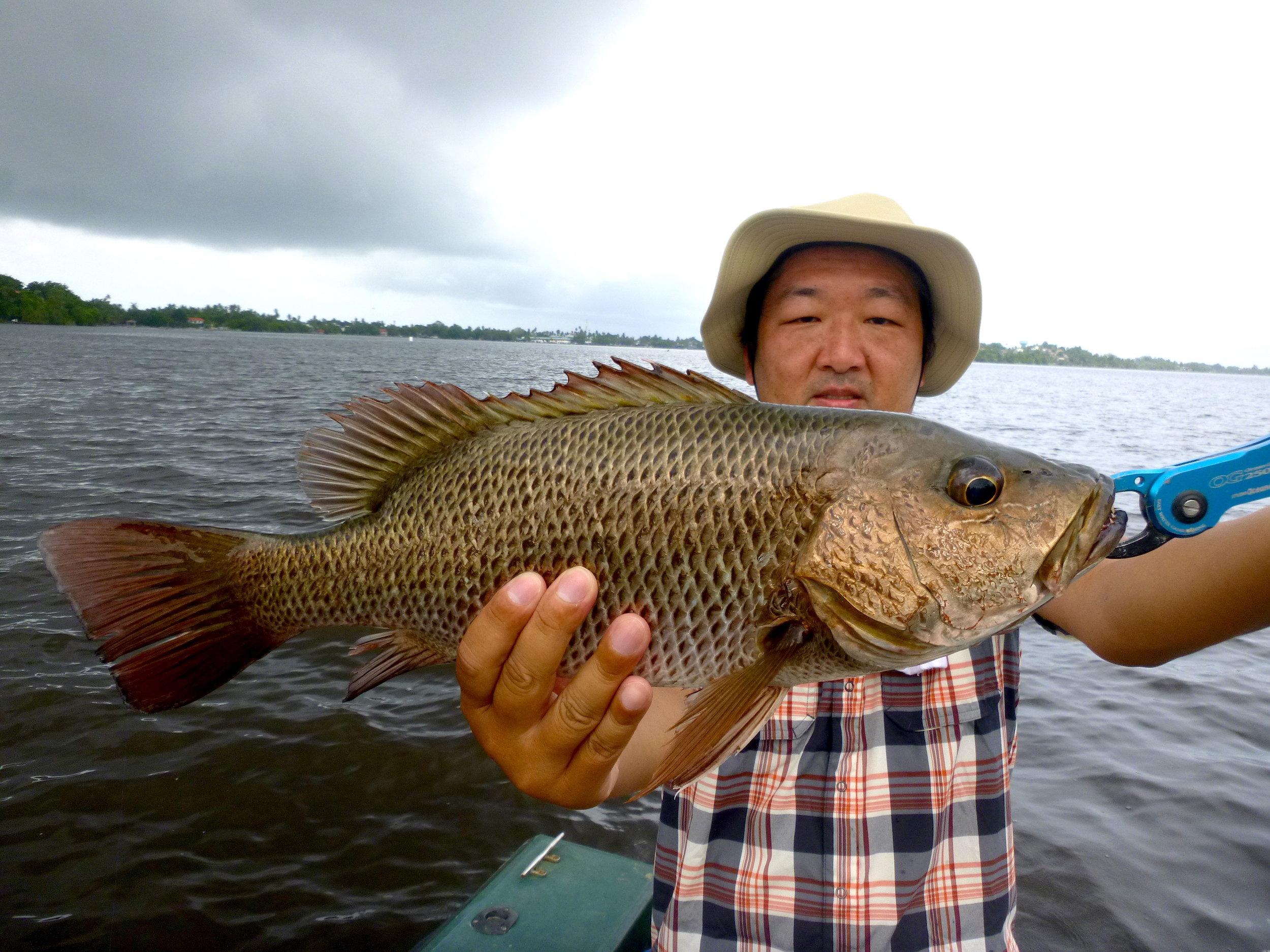 Sportfishing Lanka Mangrove Jack 4 Fishing at Bolgoda Lake.JPG