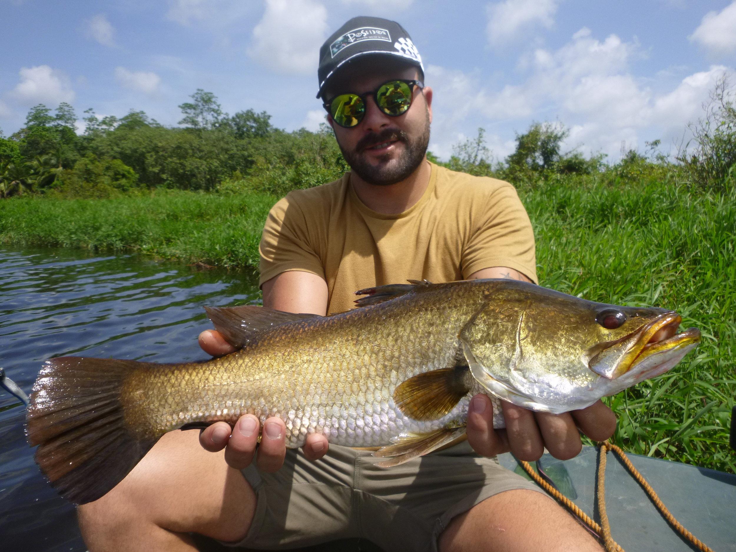Sportfishing Lanka Golden Barramundi Fishing at Bolgoda Lake.JPG