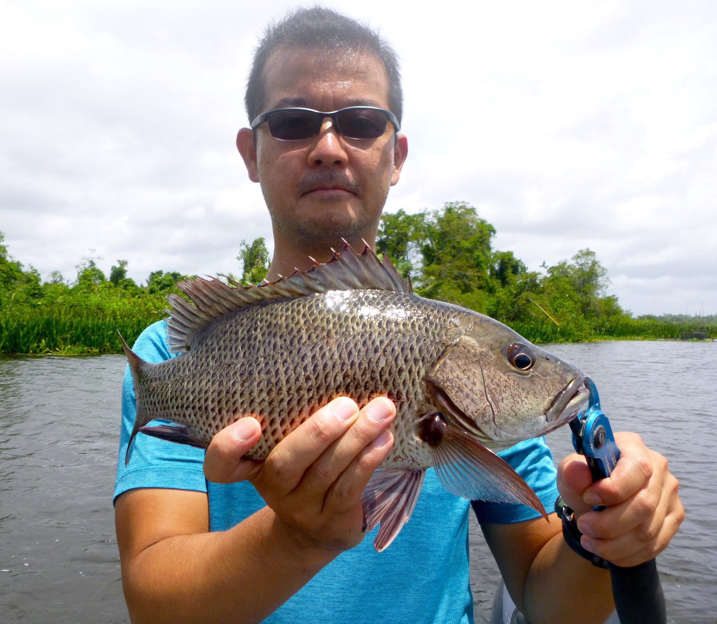 Sportfishing Lanka Bolgoda Lake Mangrove Jack.JPG