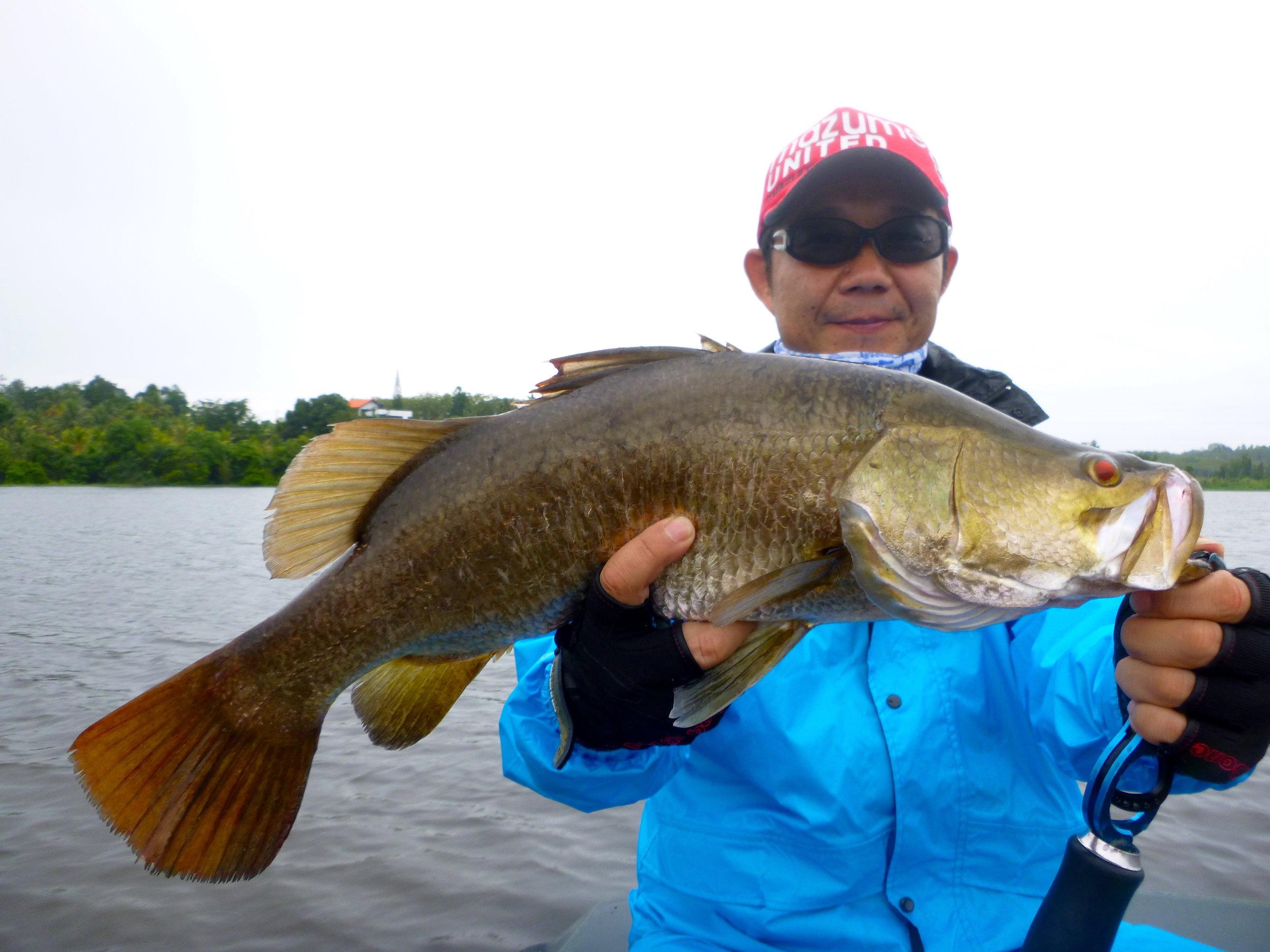 Barramundi Bolgoda Lake Sportfishing Lanka.JPG
