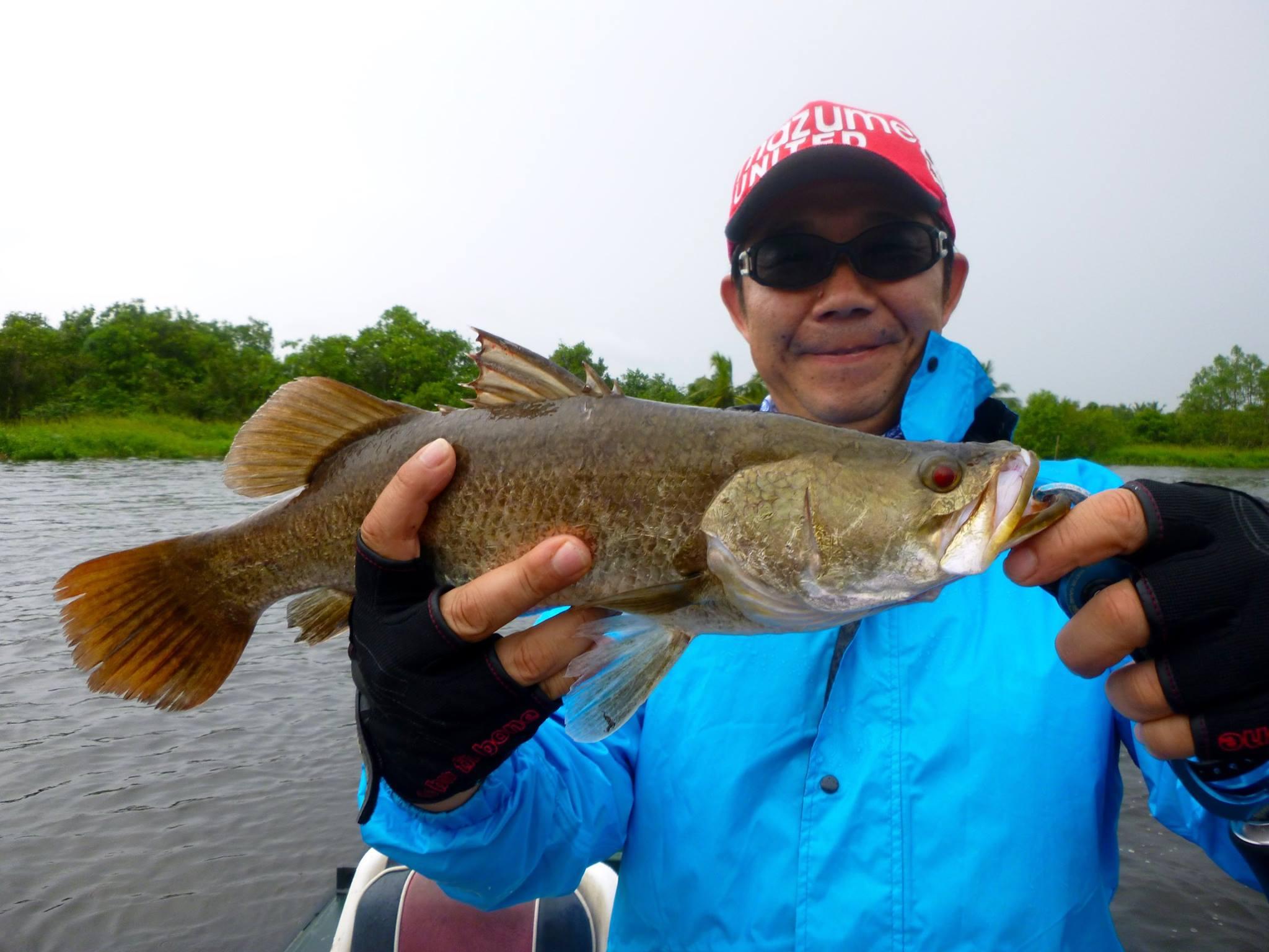 Barramundi Bolgoda Lake Casting fishing.jpg