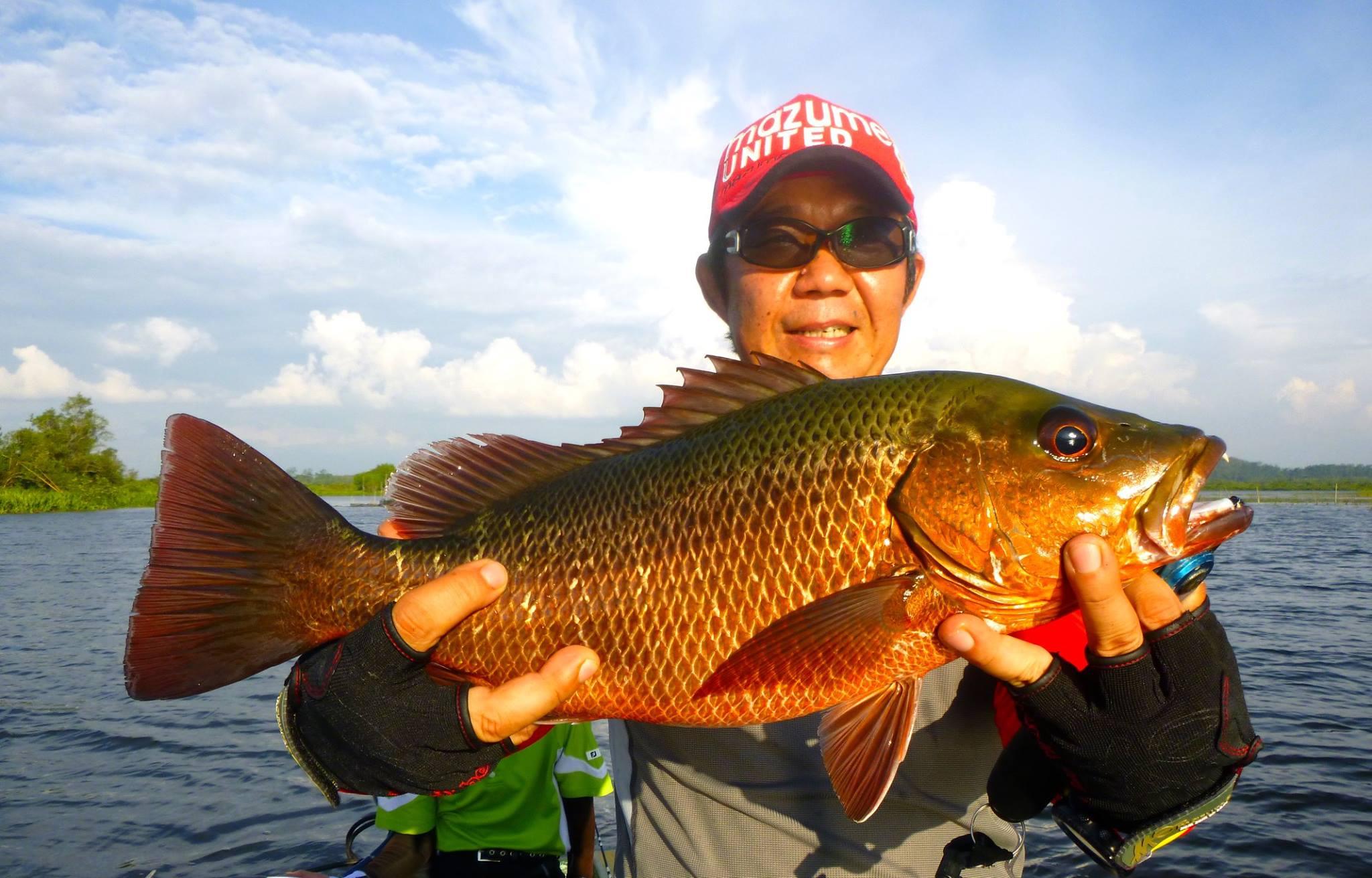 Sportfishing Lanka Mangrove Jack Bolgoda Lake Fishing.jpg